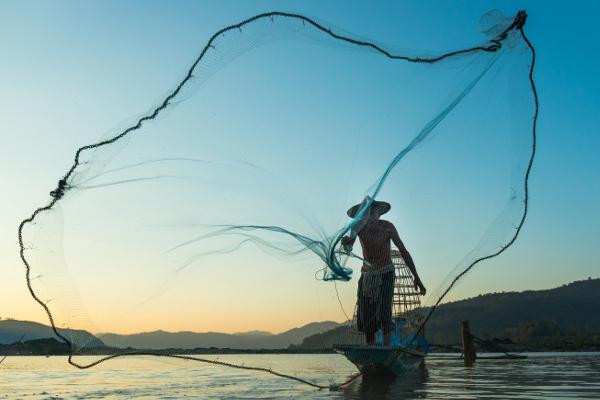 Fischer wirft sein Netz aus